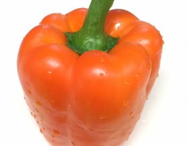 βカロテン多い野菜イメージ画像